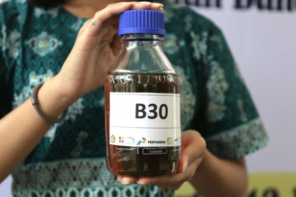 ESDM, biodiesel