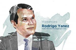 Wakil Menteri Luar Negeri Bidang Perdagangan Chili Rodrigo Yáñez Benítez