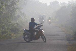Kabut Asap Semakin Tebal di Aceh Barat