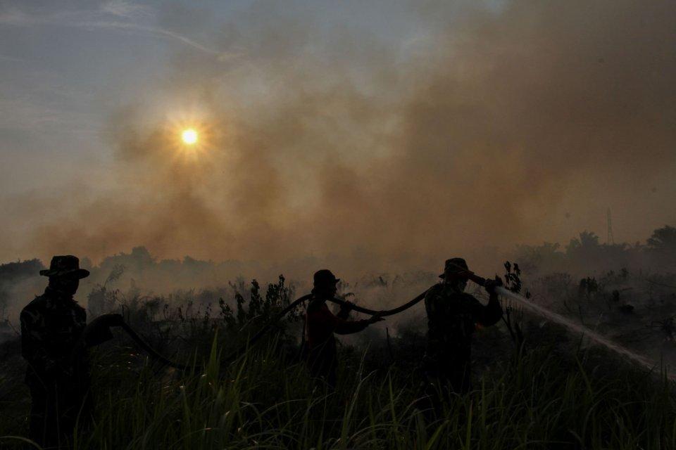 Jokowi, Kebakaran Hutan, TNI-Polri