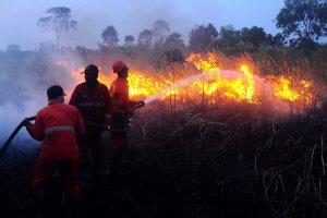 Kebakaran Lahan Gambut di Sumsel