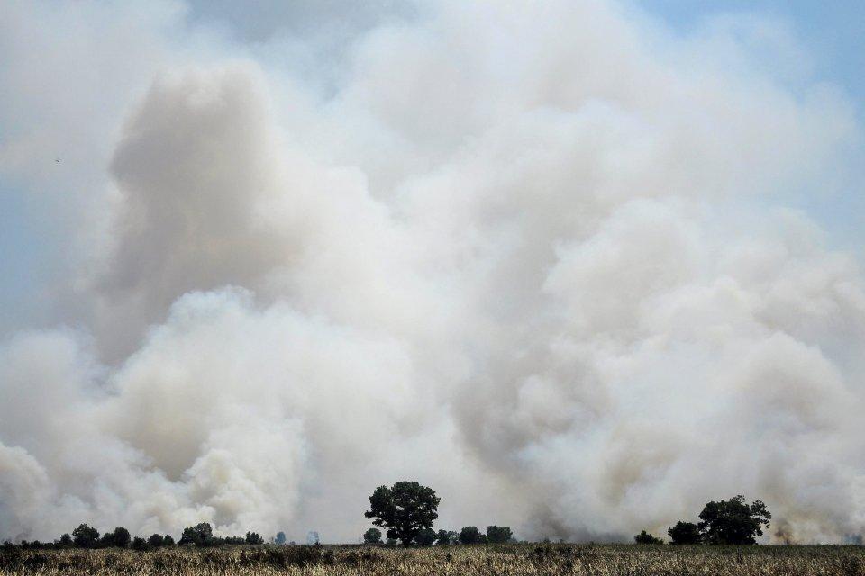 Areal lahan gambut yang terbakar di desa Rambutan, Ogan Ilir, Sumatera Selatan, Rabu (7/8/2019). Berdasarkan data BPBD Sumatera Selatan kebakaran hutan dan lahan di Sumatera Selatan mencapai 257,9 hektar. ANTARA FOTO/Ahmad Rizki Prabu