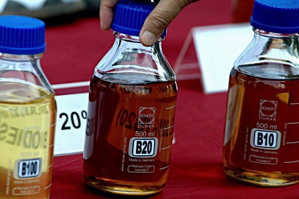 biodiesel, Uni Eropa, bea masuk biodiesel Indonesia di Eropa, program B30, program B50, penyerapan CPO
