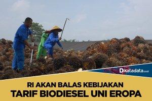 Biodiesel uni eropa