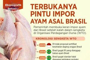 impor ayam brasil