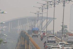 Dampak Kabut Asap di Pekanbaru