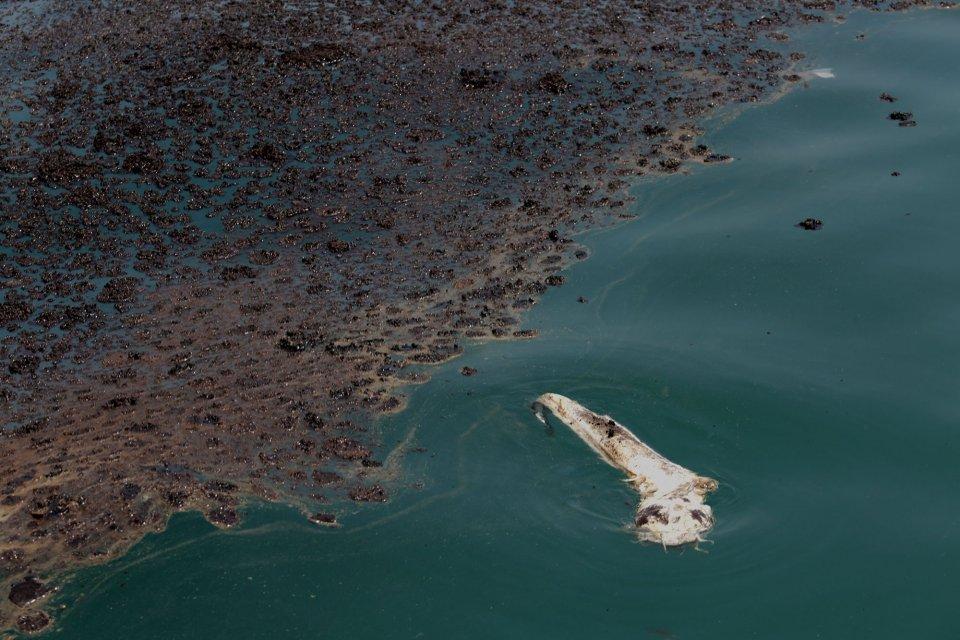 Karawang, tumpahan minyak, ONWJ
