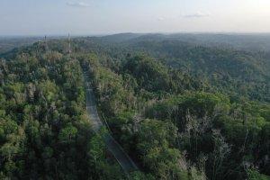 Tahura Bukit Soeharto