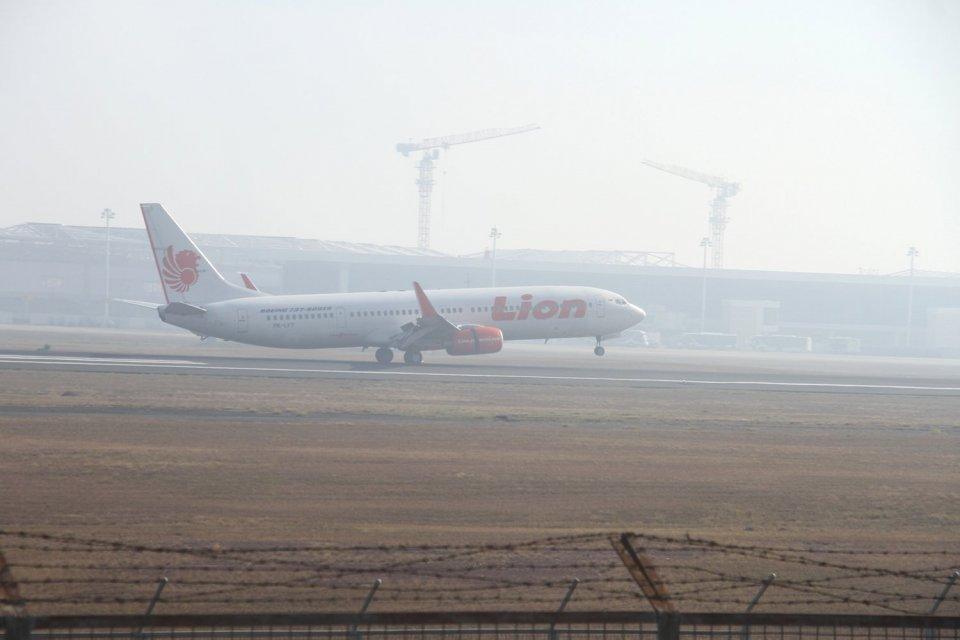 pesawat terbang, kebakaran hutan, penumpang pesawat udara, data BPS