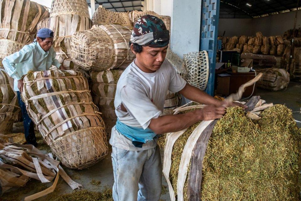 indonesian tobacco, laba turun,