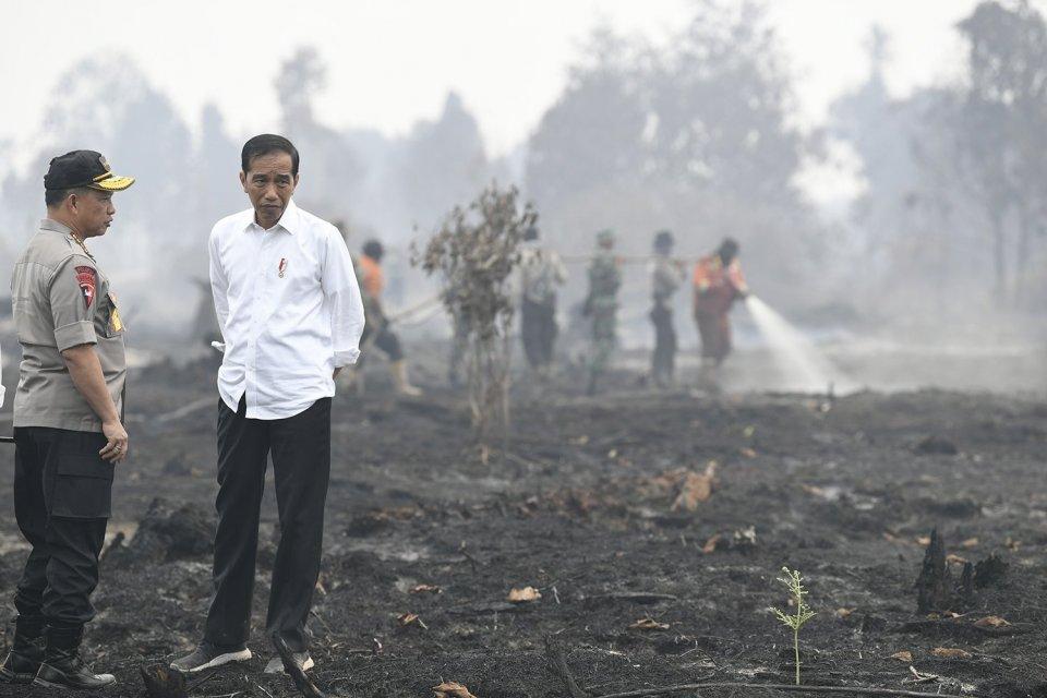 Presiden Joko Widodo (kanan) didampingi Kapolri Jenderal Pol Tito Karnavian meninjau penanganan kebakaran lahan di Desa Merbau, Kecamatan Bunut, Pelalawan, Riau, Selasa (17/9/2019).