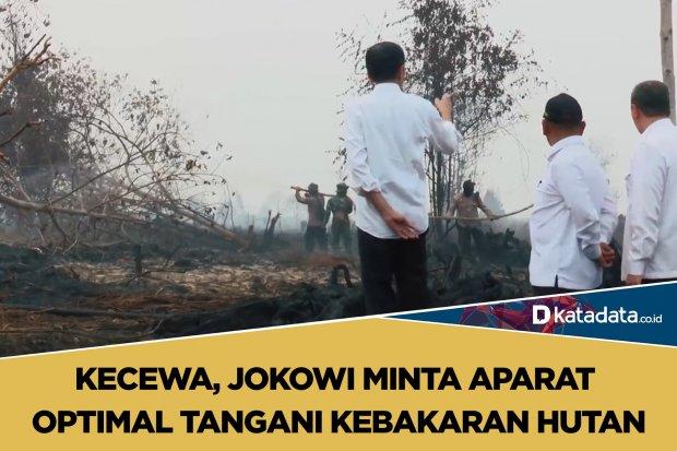 jokowi kebakaran hutan