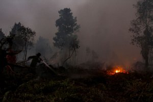 Pemadaman karhutla di Riau hingga malam hari