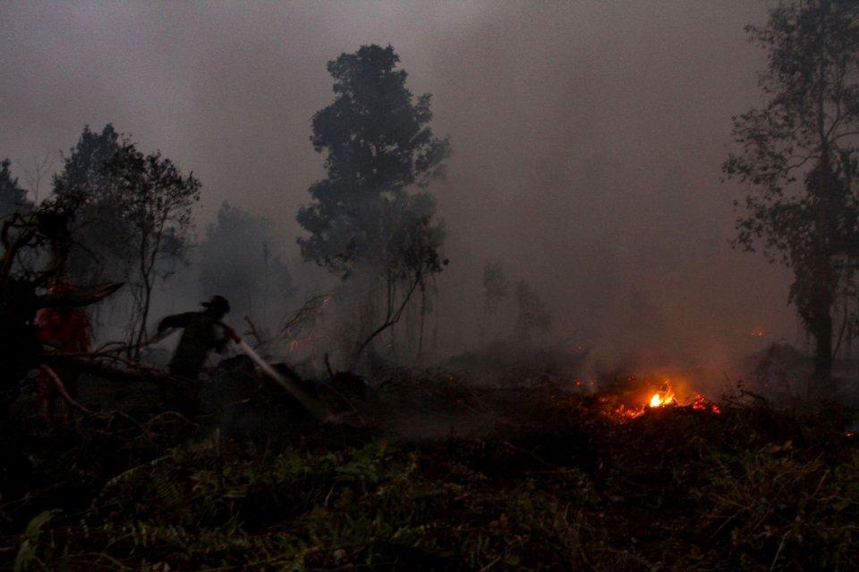 Kebakaran hutan, Karhutla, Polri