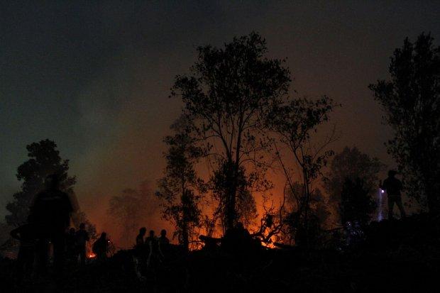 karhutla, asap kebakaran