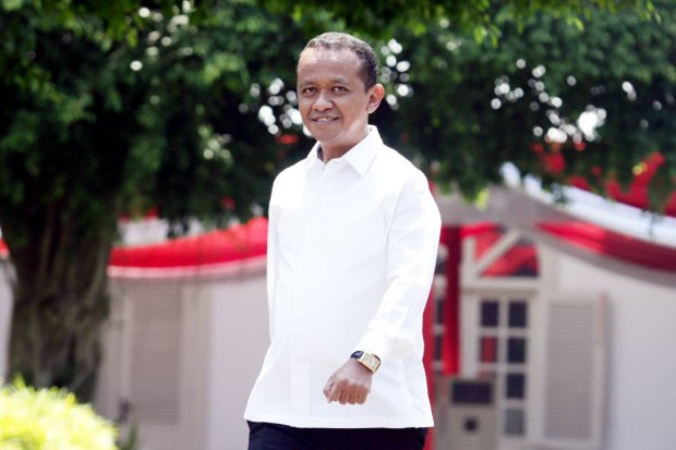 Bahlil, Fachrul Rozi, calon menteri, kabinet Jokowi