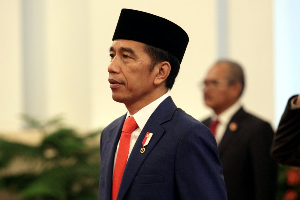 wakil menteri, 12 wamen dilantik, jokowi