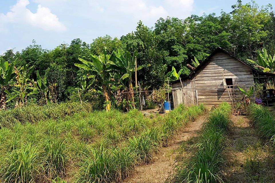Desa Payakabung