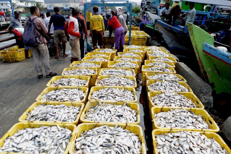 Pangkas Peran Tengkulak, KNTI Dorong Pelelangan Ikan Dikelola Nelayan.