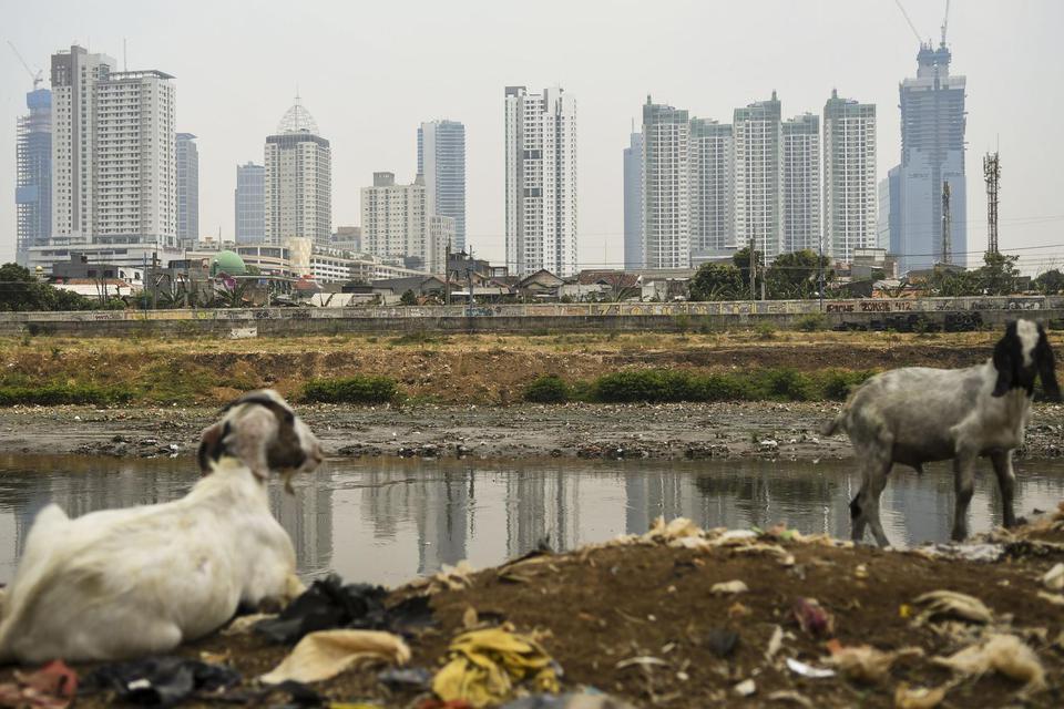 Pemandangan deretan gedung bertingkat di ibu kota terlihat dari kawasan Tanah Abang, Jakarta, Selasa (5/11/2019). Badan Pusat Statistik (BPS) mencatat laju pertumbuhan ekonomi pada kuartal III 2019 tumbuh sebesar 5,02 persen secara tahunan, capaian terseb