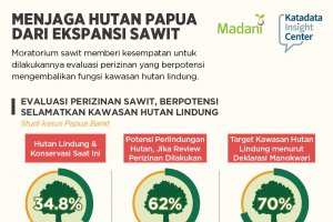 Menjaga Hutan Papua