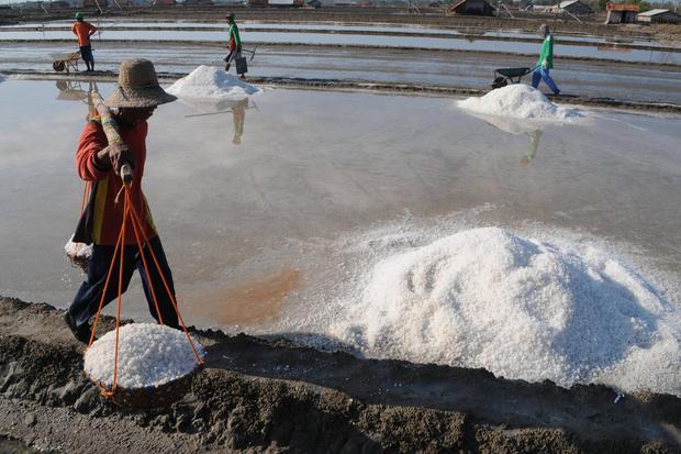 Pekerja mengangkut garam saat panen. Pemerintah tengah mendorong mendorong industri untuk menyerap garam nasional.