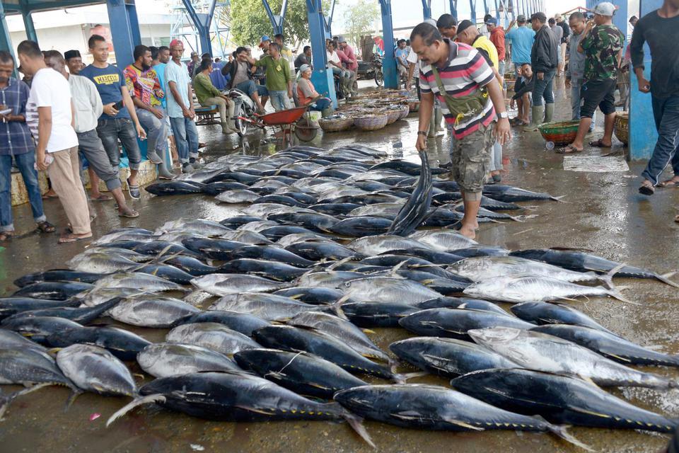 Banyak Restoran Tutup Terimbas Corona, Permintaan Ikan Anjlok 20%.