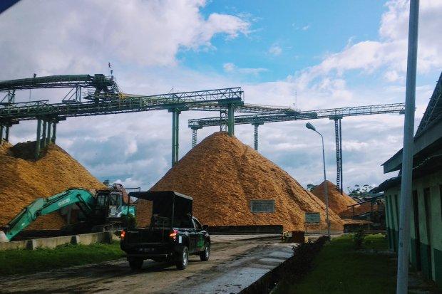 Pengolahan produk kayu PT Toba Pulp Lestari di Porsea, Kabupaten Toba Samosir, Sumatera Utara