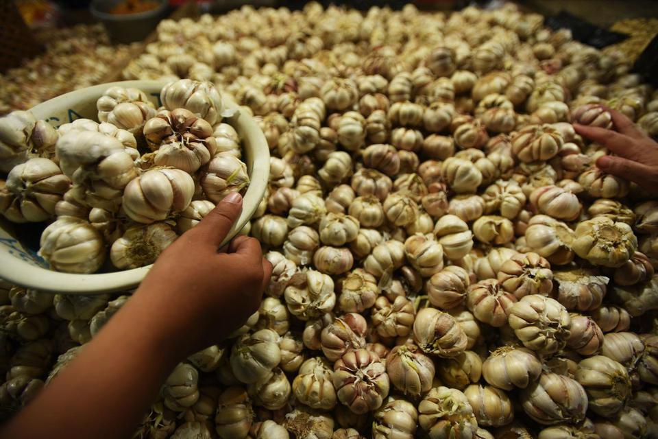 impor bawang putih, tiongkok, virus corona,