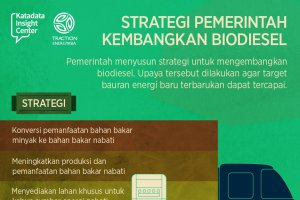 Strategi Pemerintah Kembangkan Biodiesel