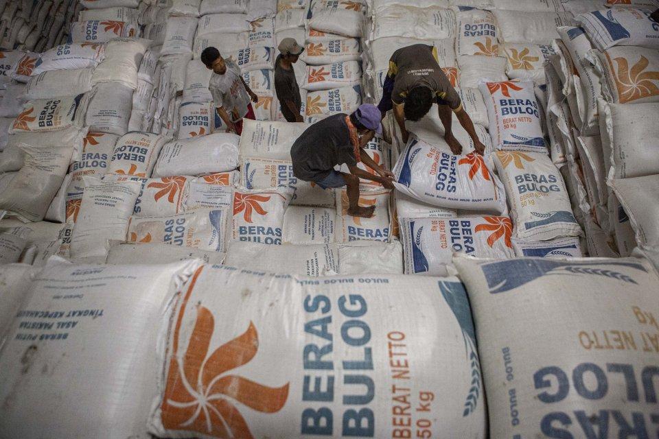 Amankan Stok Pangan, Jokowi Disarankan Realisasikan Impor Beras.