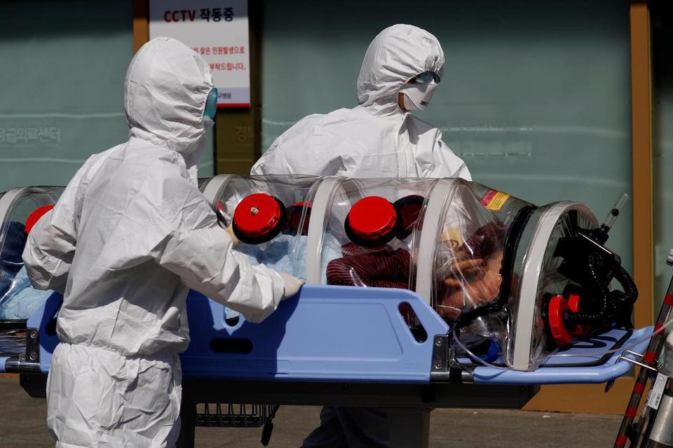 who, tugas who, peran who, pandemi corona, covid-19, virus corona, investigasi corona, penyelidikan asal-usul virus corona