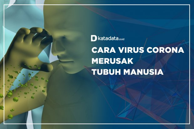Cara Virus Corona Merusak Tubuh Manusia
