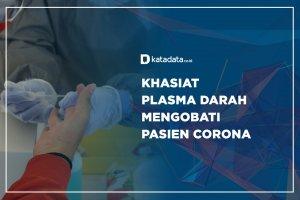 Khasiat Plasma Darah Mengobati Pasien Corona