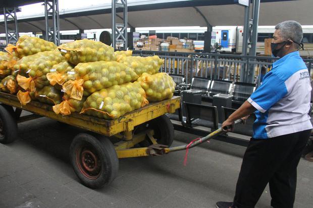 pandemi corona, pengiriman barang, logistik, paxel