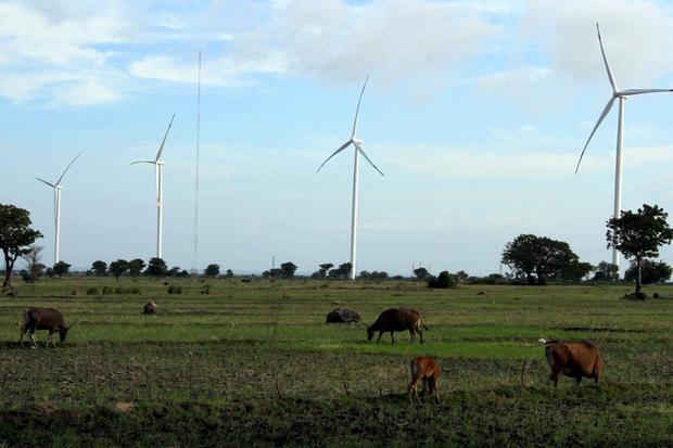 Hewan ternak milik warga mencari makan di area Pembangkit Listrik Tenaga Bayu (PLTB) Tolo di Kabupaten Jeneponto, Sulawesi Selatan, Kamis (9/7/2020). Kementerian ESDM mencatat bauran energi baru dan terbarukan (EBT) telah mencapai 15 persen dari target se