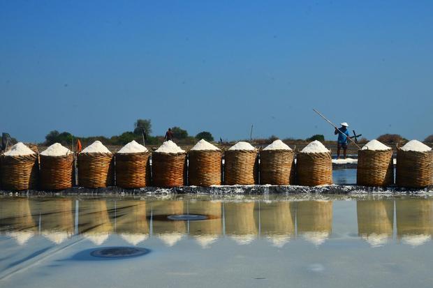 Petani memanen garam di area tambak Desa Surodadi, Kedung, Jepara, Jawa Tengah, Senin (27/7/2020). Menurut petani, akibat musim kemarau yang cenderung basah, masa produksi garam saat ini mundur dan cenderung menurun dibanding tahun sebelumnya dan harga ga