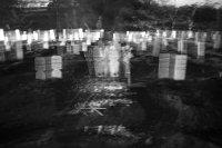 Angka Kematian Akibat Covid-19 Bertambah, Lahan Pemakaman Semakin Berkurang