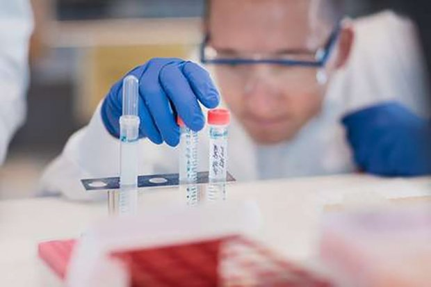 bursa efek, vaksin virus corona, pandemi corona