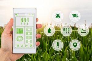 Ilustrasi Aplikasi Pertanian