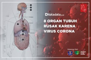 8 Organ Tubuh Rusak karena Virus Corona