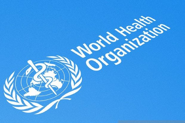 who, covid-19, virus corona, pandemi corona, pandemi, internasional, gerakan 3M