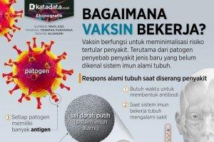 Infografik_Bagaimana vaksin bekerja