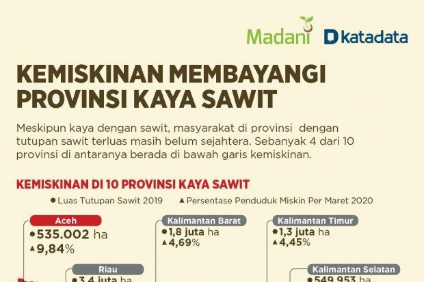 Kemiskinan Membayangi Provinsi Kaya Sawit