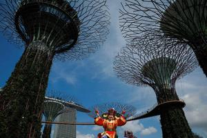 LUNAR-NEWYEAR/SINGAPORE