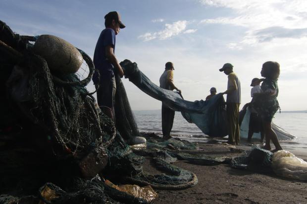 Startup Asuransi Qoala Gaet BRI - Aruna untuk Sasar Nelayan