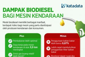 Biodiesel #6