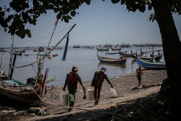 ekspor, perikanan, nelayan, bumn