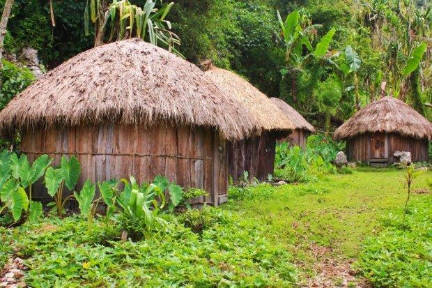 Gambar rumah adat Papua yang disebut rumah Honai