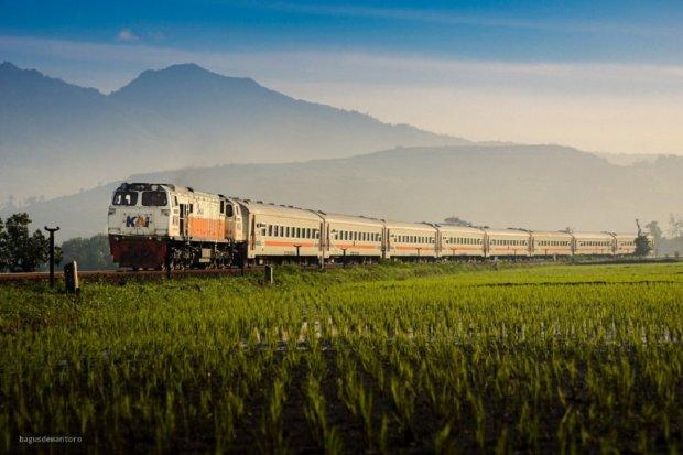 penumpang kereta, kereta